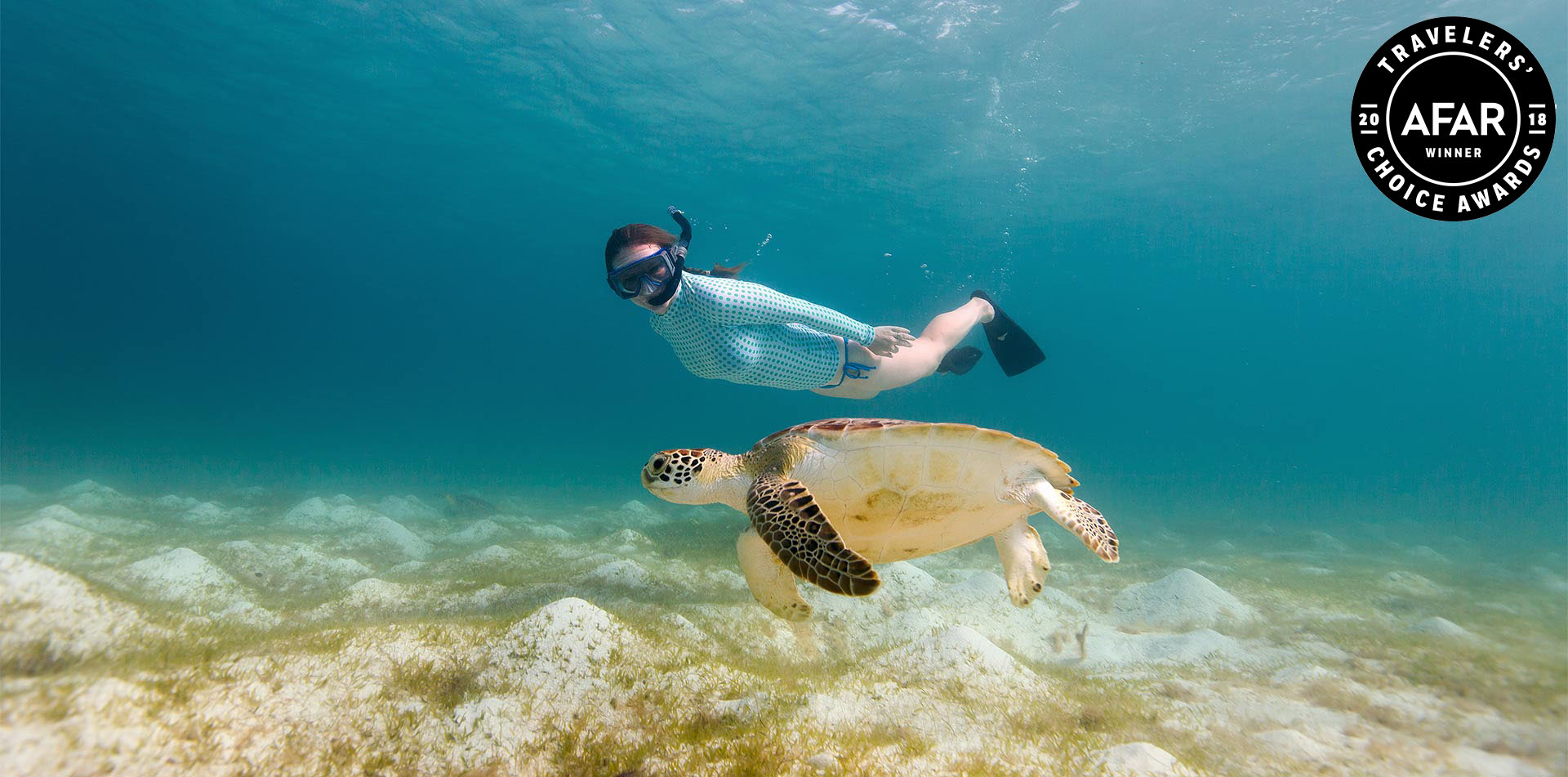 Woman snorkeling with turtle