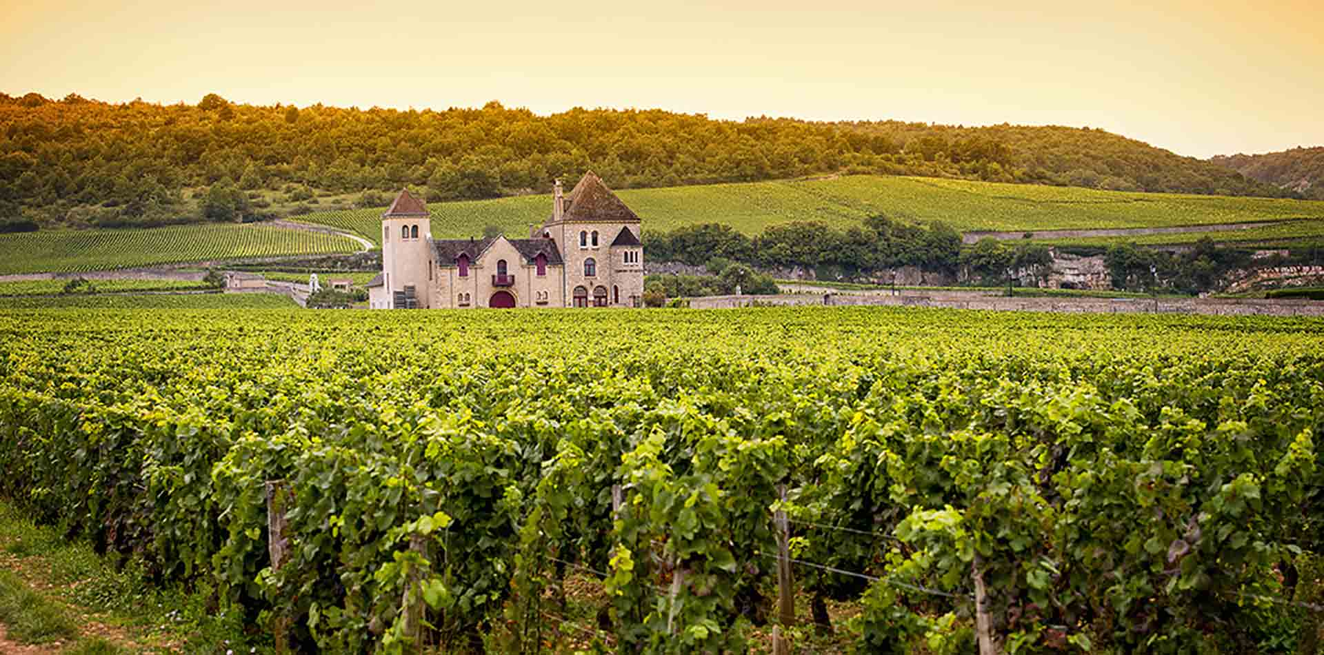 Europe France river Rhone cruising beautiful chateau surrounded by vineyards-luxury vacation destinations