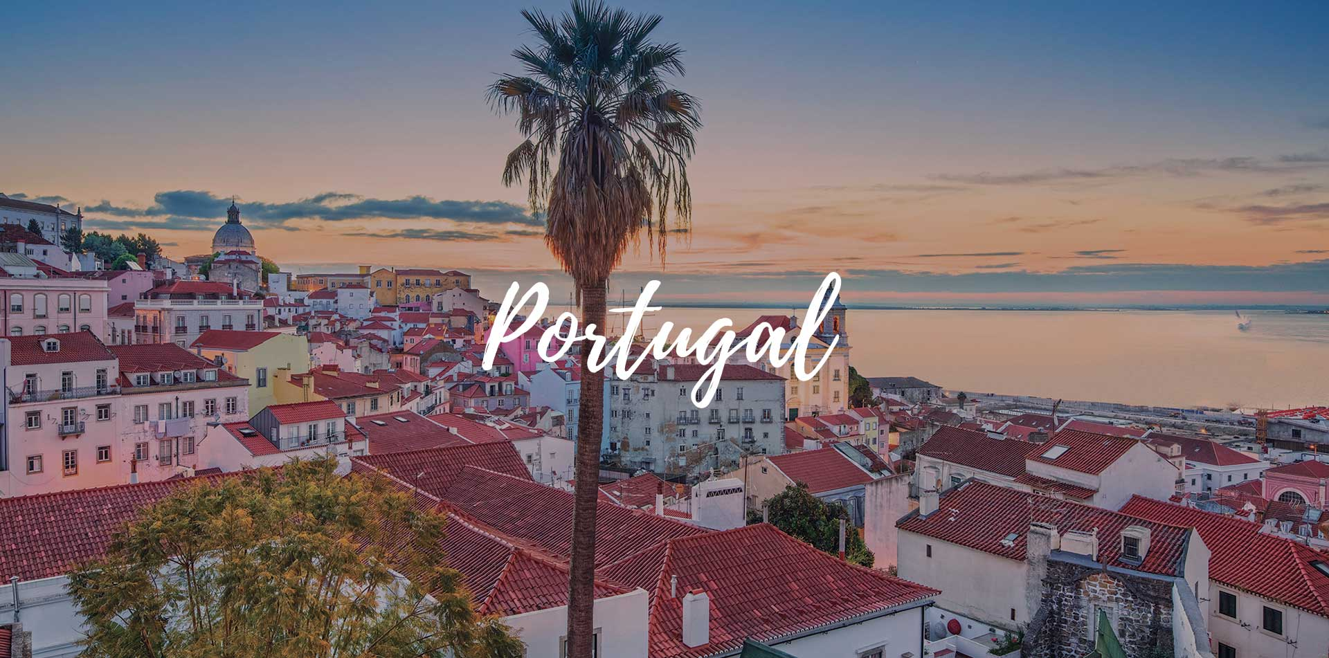 Europe Portugal view of palm tree over the cityscape of Lisbon with ocean view - luxury vacation destinations