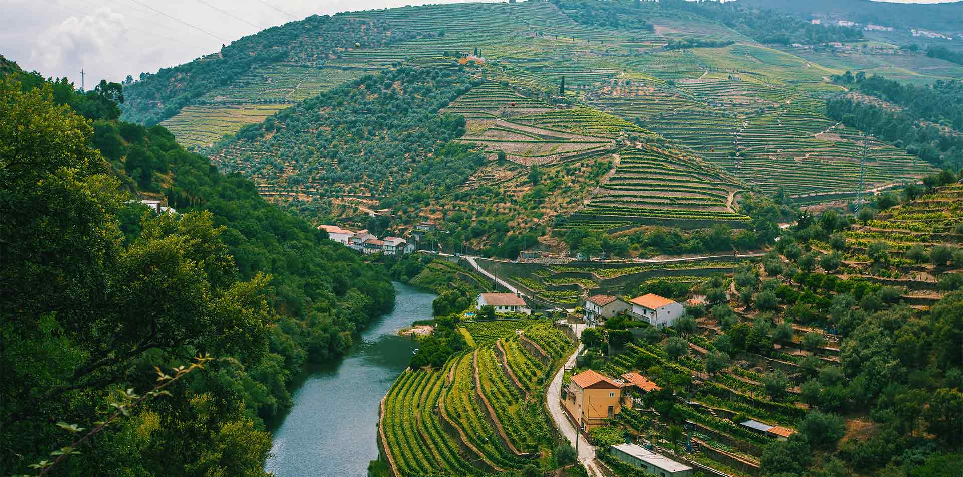 Europe Portugal Douro Valley aerial view of river and hillside vineyards - luxury vacation destinations