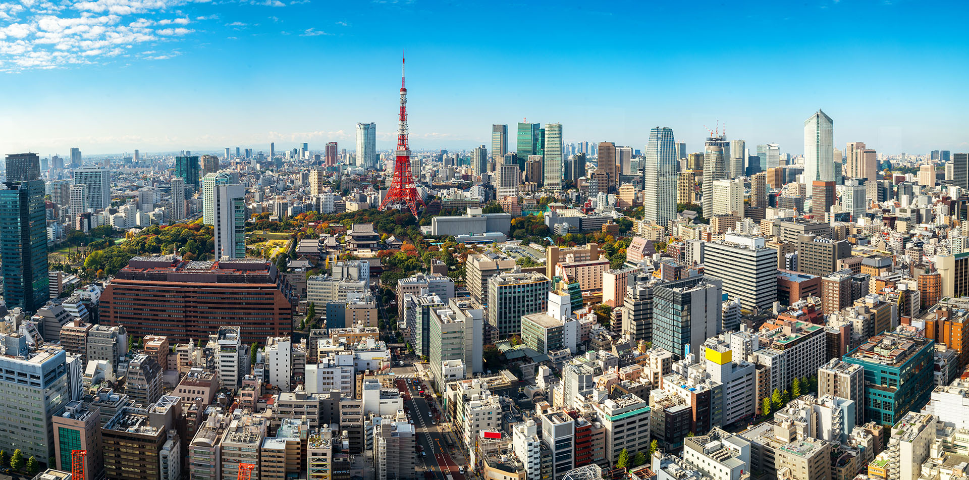 Asia Japan daytime cityscape view of Tokyo with Tokyo Tower - luxury vacation destinations
