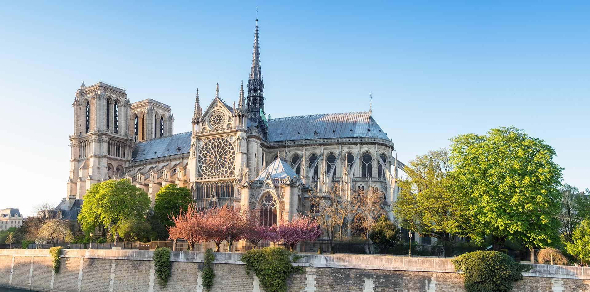 Europe France Paris Notre-Dame Catholic cathedral Gothic architecture colorful trees in bloom - luxury vacation destinations