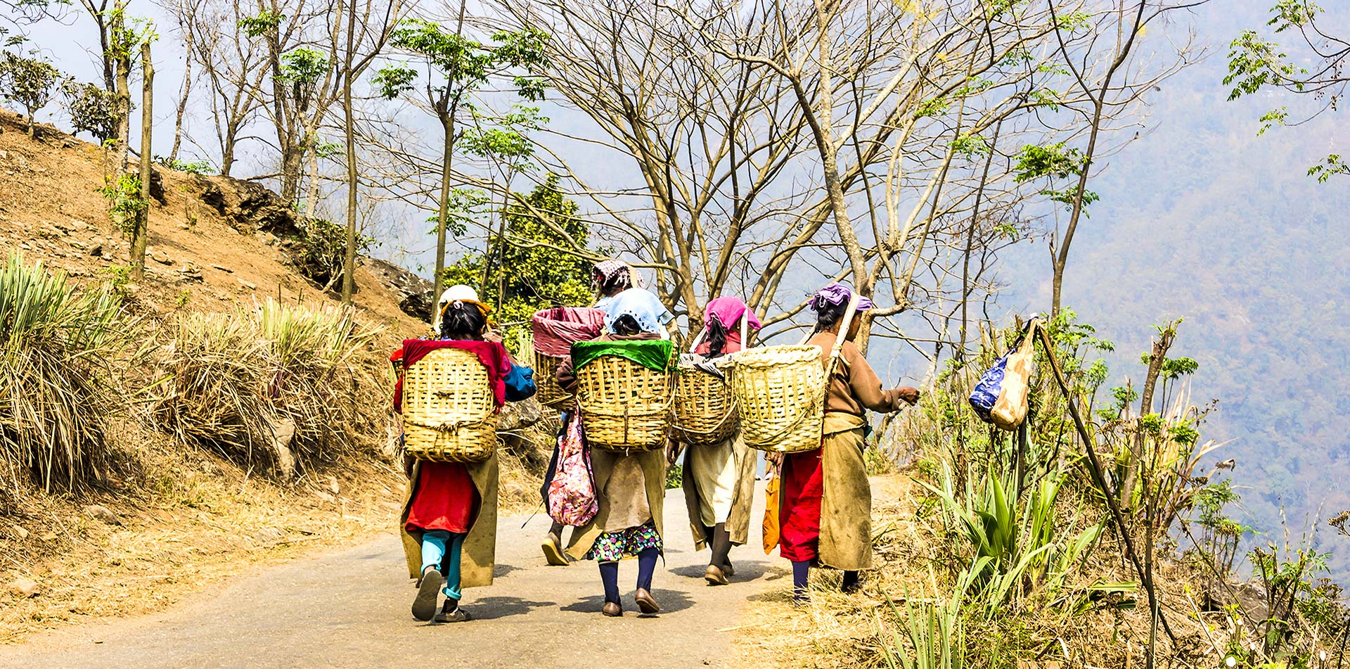 Asia India Darjeeling local women walking on trail with babies on their backs - luxury vacation destinations