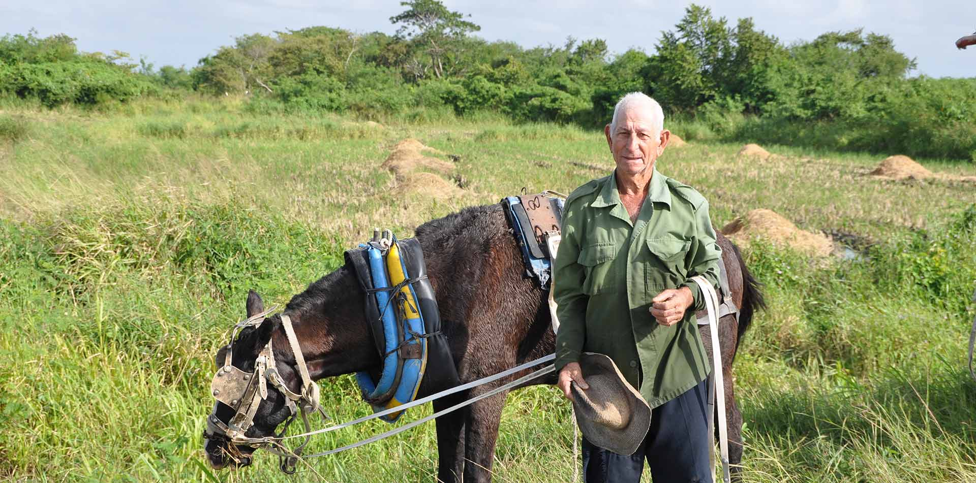 North America Caribbean Cuba countryside green grass local farmer horse - luxury vacation destinations