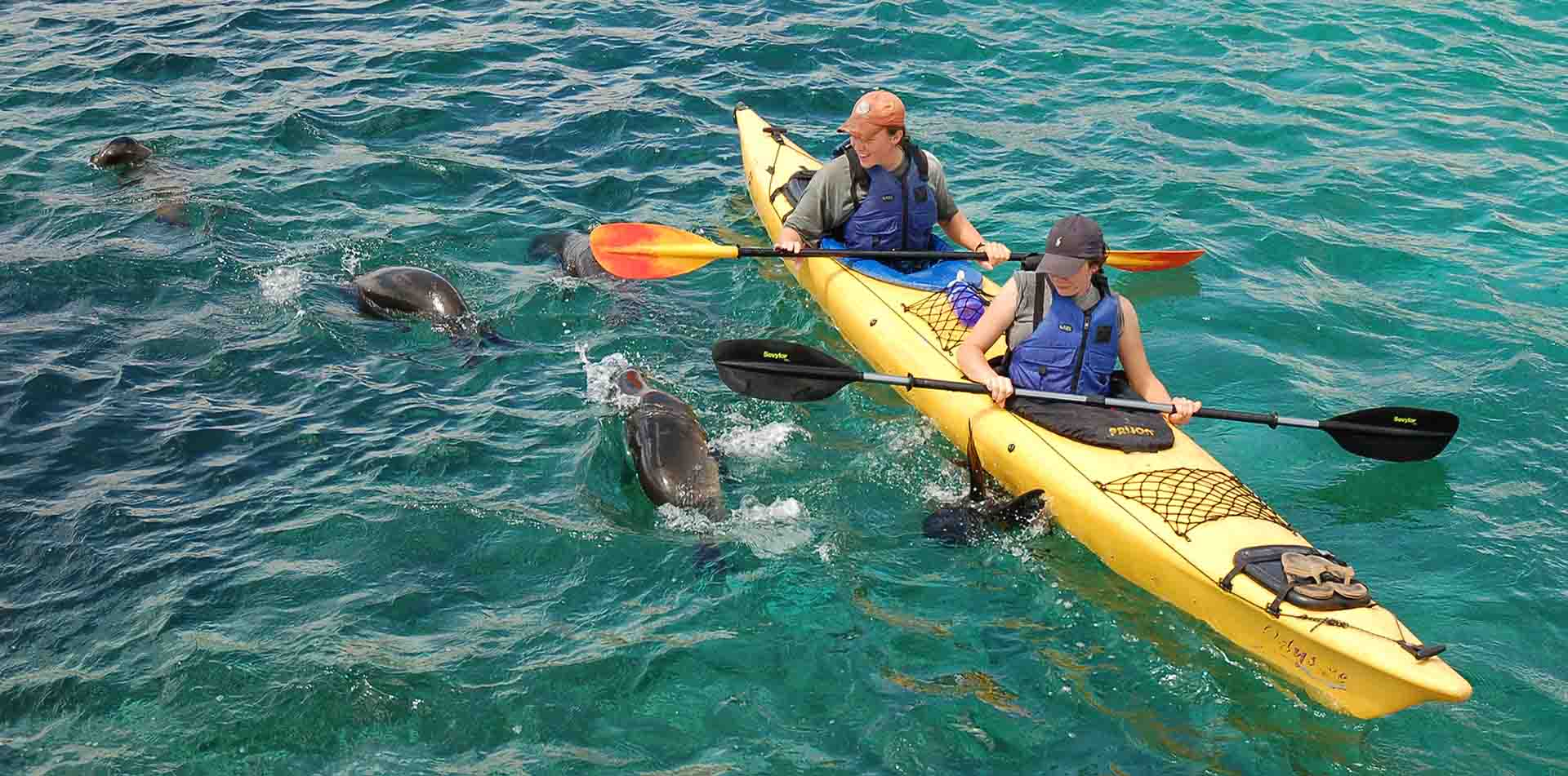 South America Ecuador Galapagos Islands beautiful wild life Darwin kayaking with sea pups eco friendly travel -luxury vacation destinations