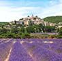 Europe France Banon in Alpes-de-Haute-Provence purple lavender fields - luxury vacation destinations