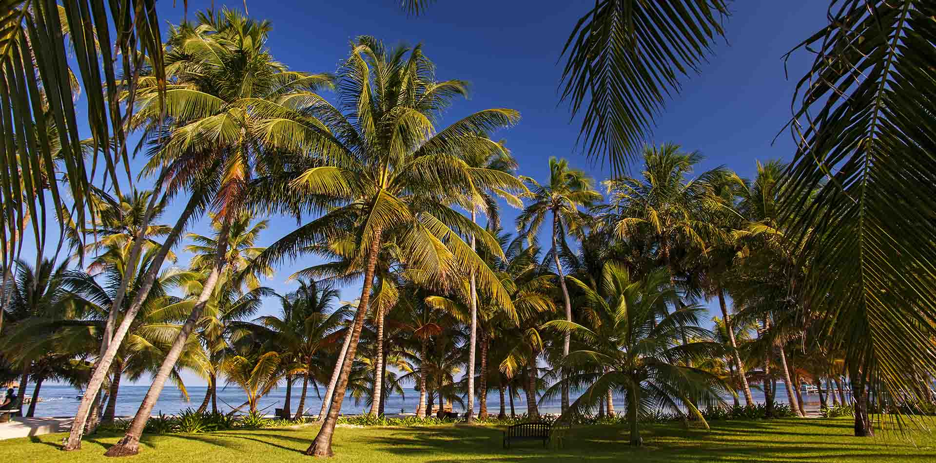 Victoria House Grounds, Belize