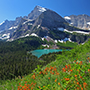 North America United States Montana Glacier National Park Grinnell Lake flower mountain forest - luxury vacation destinations