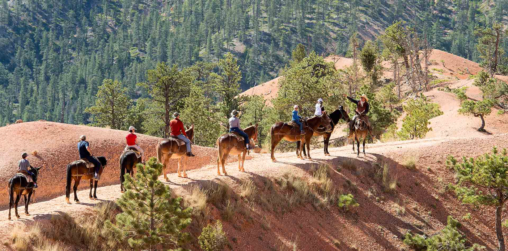 North America United States USA Utah Bryce Canyon National Park group horseback riding nature - luxury vacation destinations
