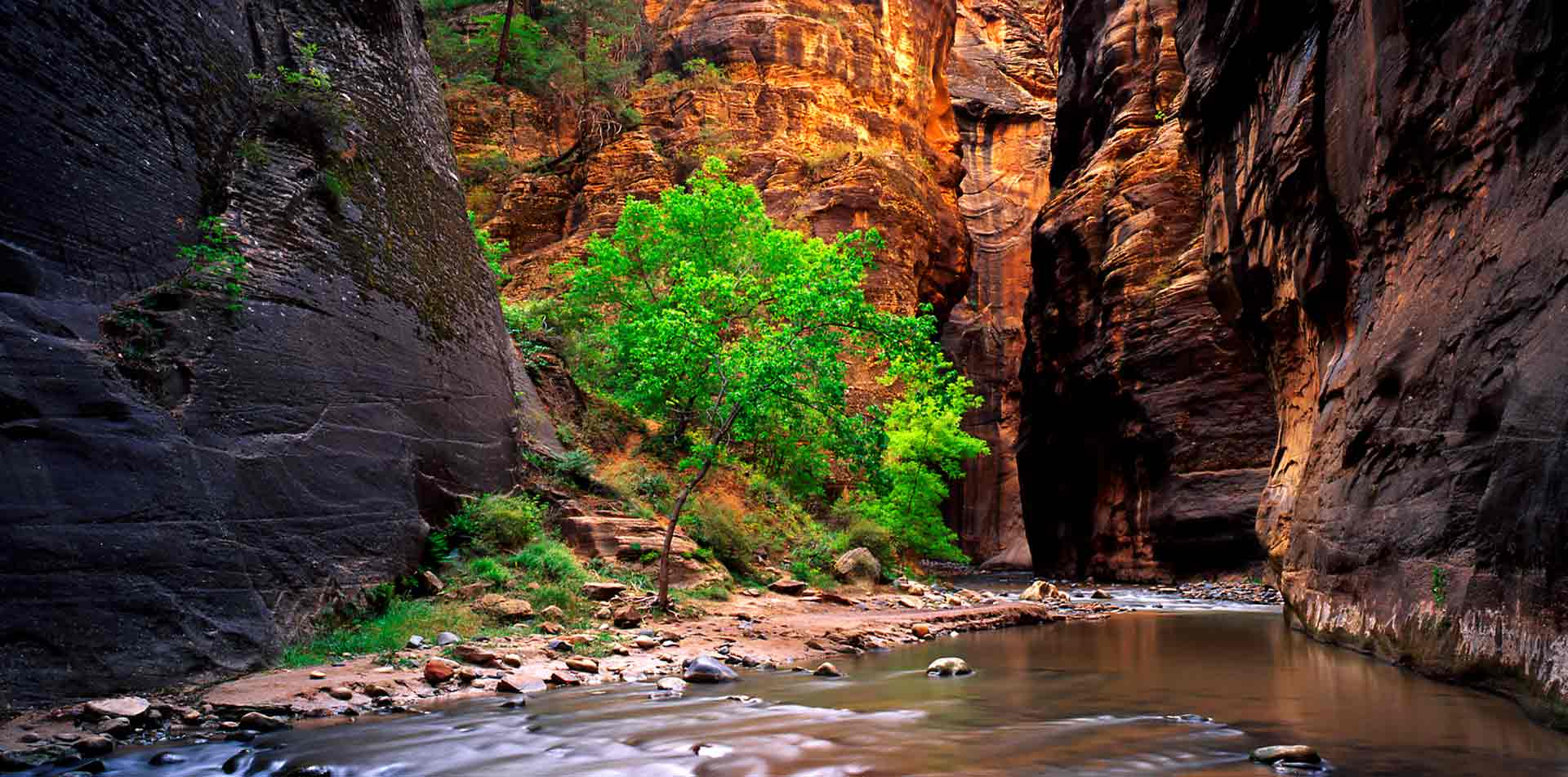 North America United States USA Utah Zion National Park Zion Narrows canyon red sandstone rock - luxury vacation destinations