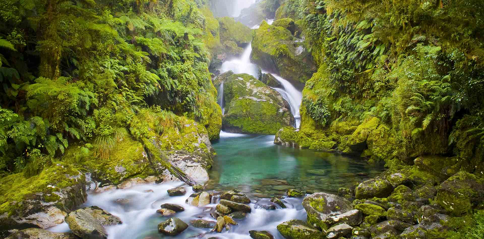 Oceania New Zealand South Island Fiordland National Park Milford Track natural lush waterfall - luxury vacation destinations
