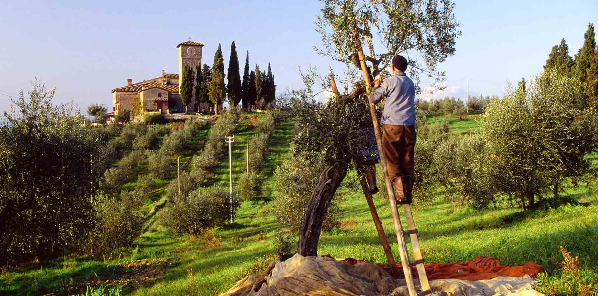 Man on ladder in Italy