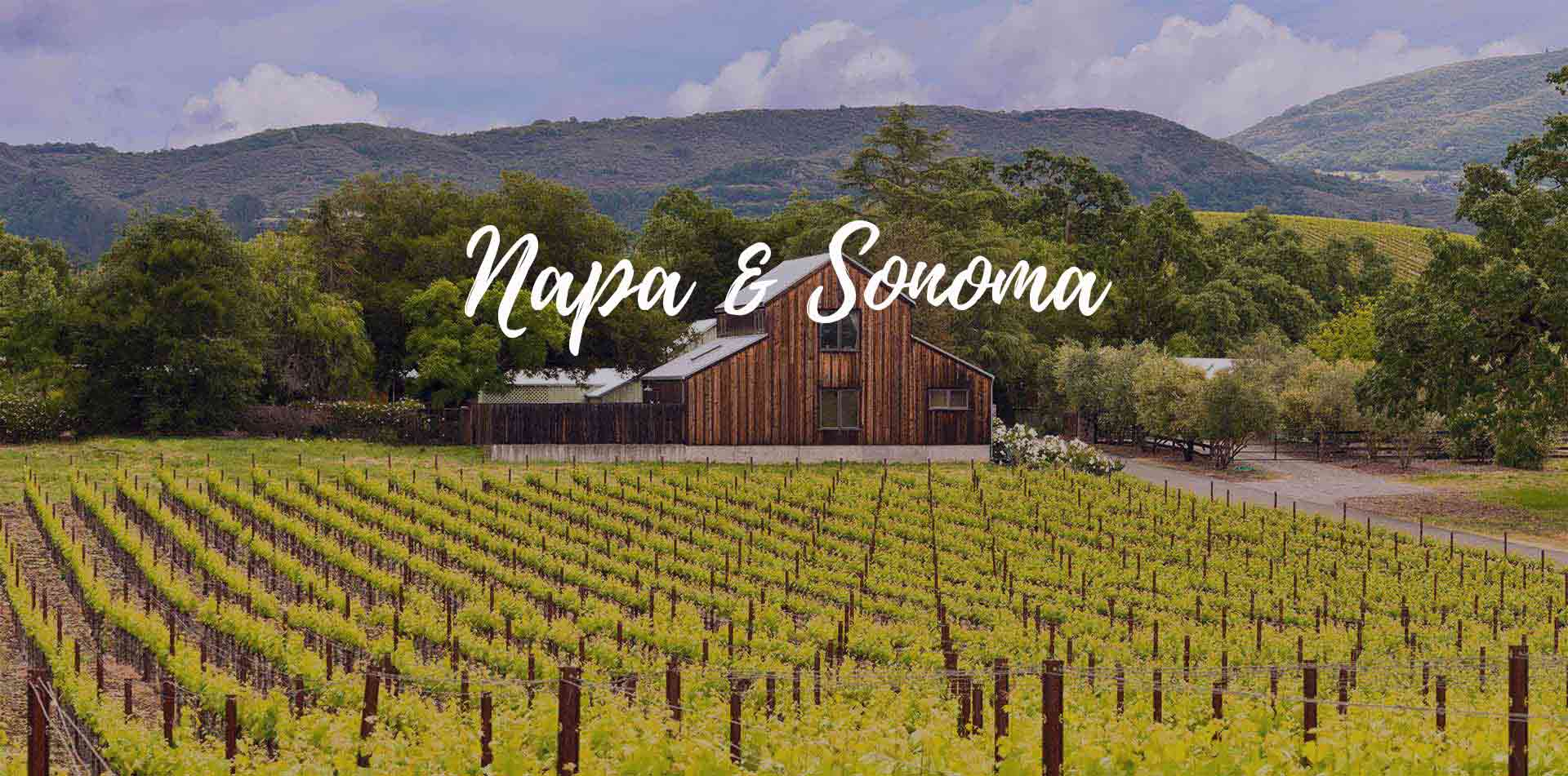 North America United States Napa and Sonoma green vineyard rustic barn wine tasting - luxury vacation destinations