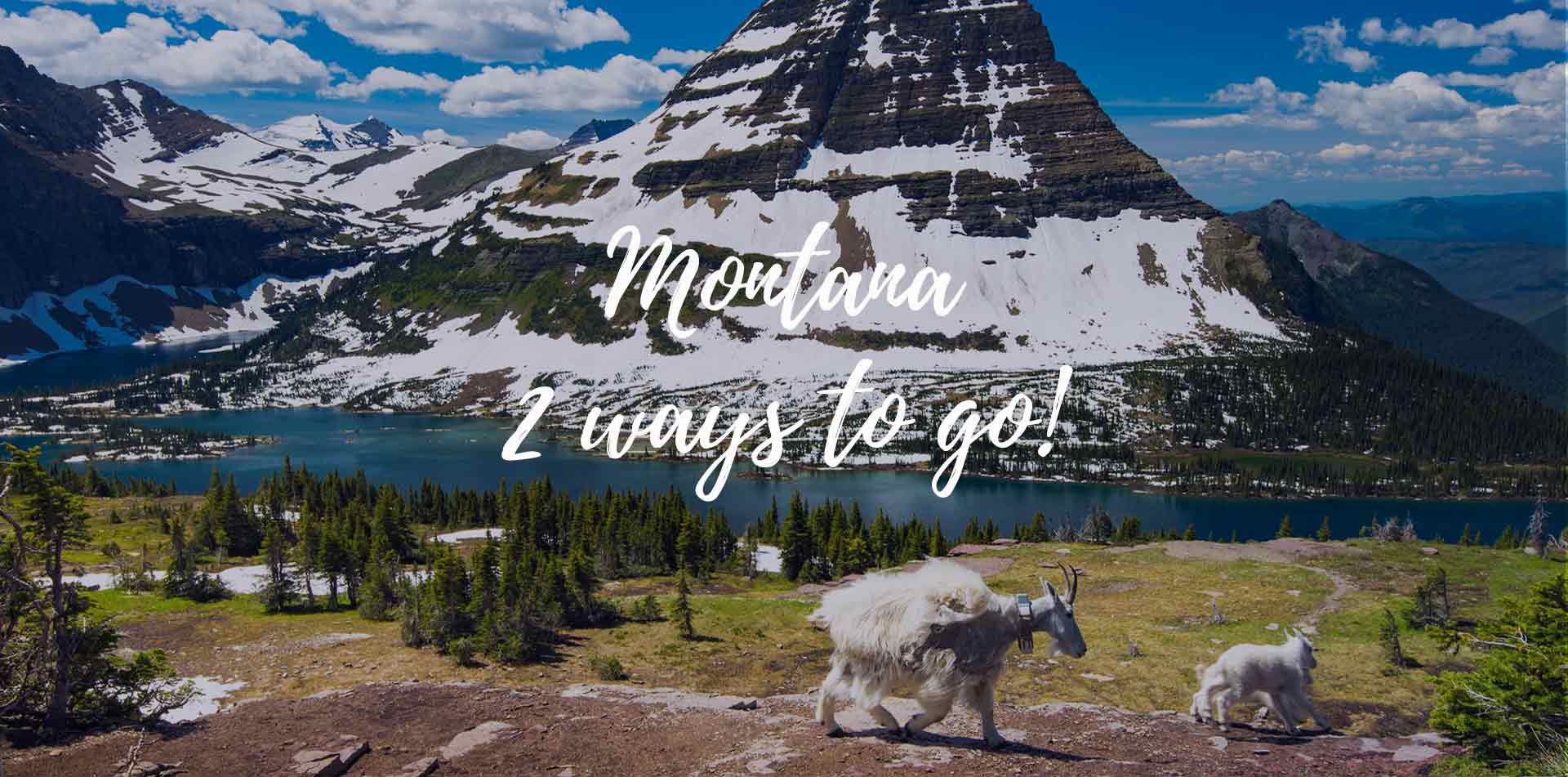 North America United States Montana Glacier National Park Hidden Lake scenic mountain goats - luxury vacation destinations