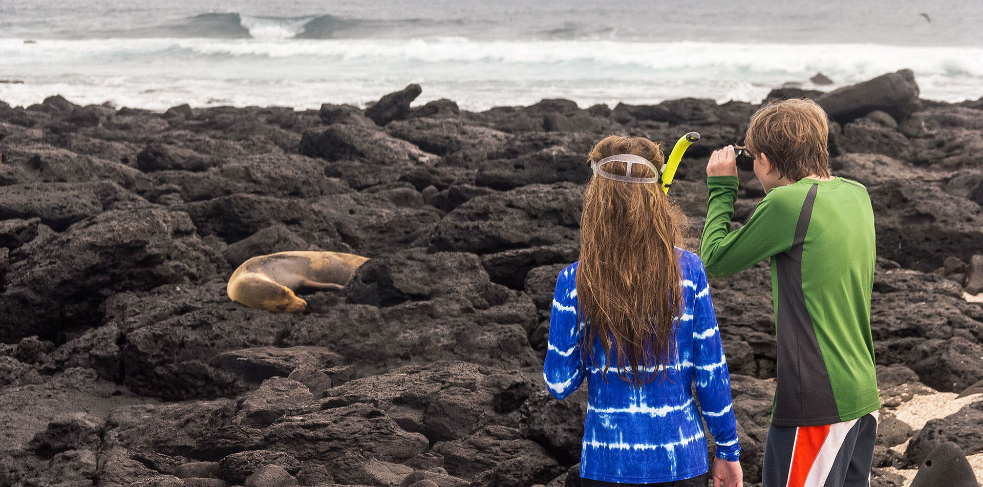 Kids looking at a sea lion on the beach, Galapagos Island
