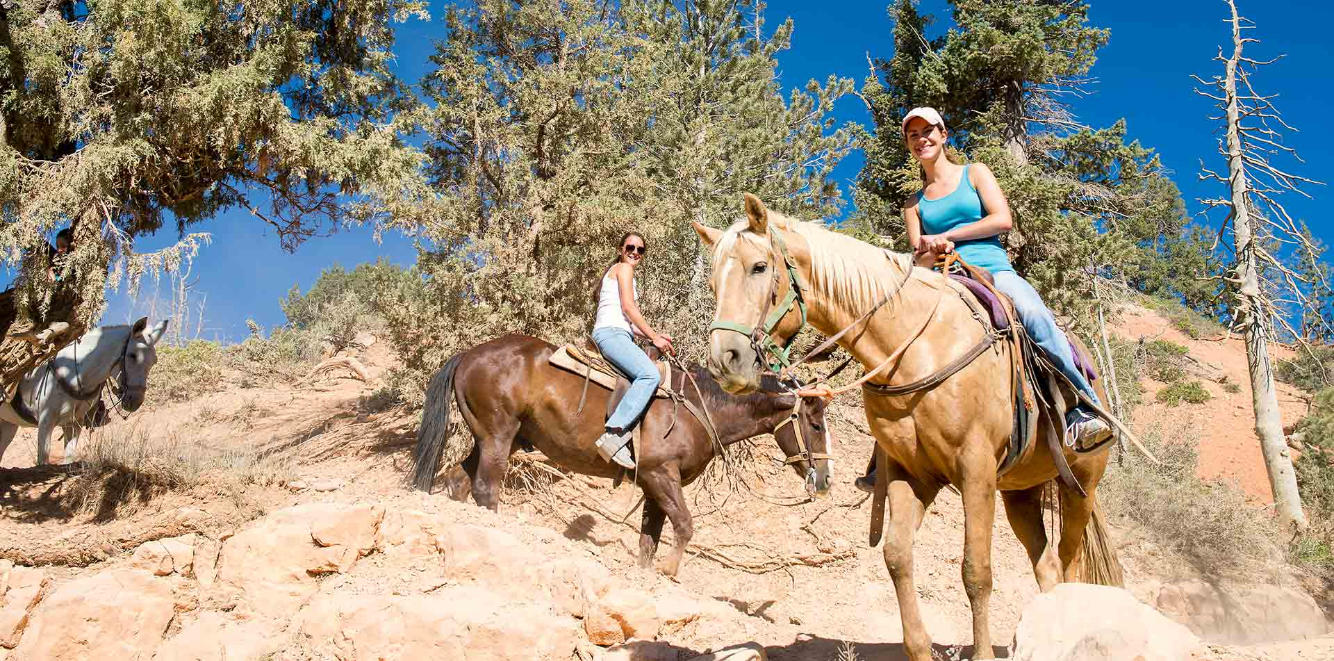 North America United States Utah Bryce Canyon National Park horseback riding rock trail nature - luxury vacation destinations