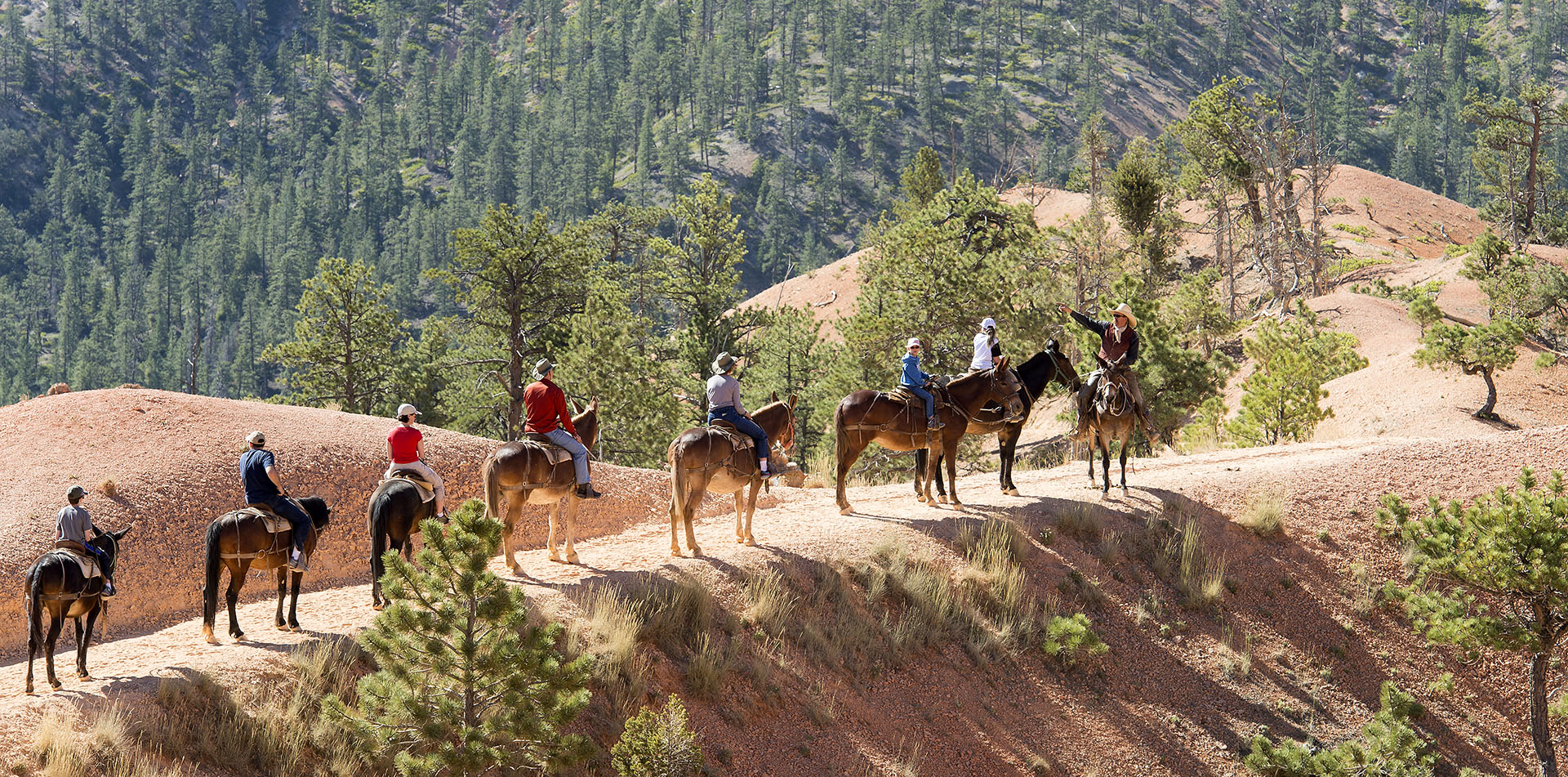 Guests horseback riding in Grand Canyon