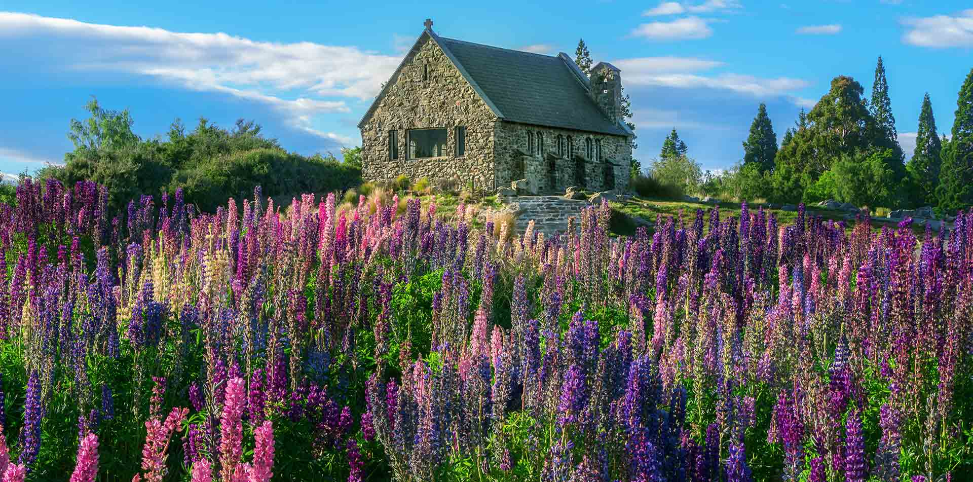 Oceania New Zealand South Island Lake Tekapo Church of Good Shepherd with wildflowers - luxury vacation destinations