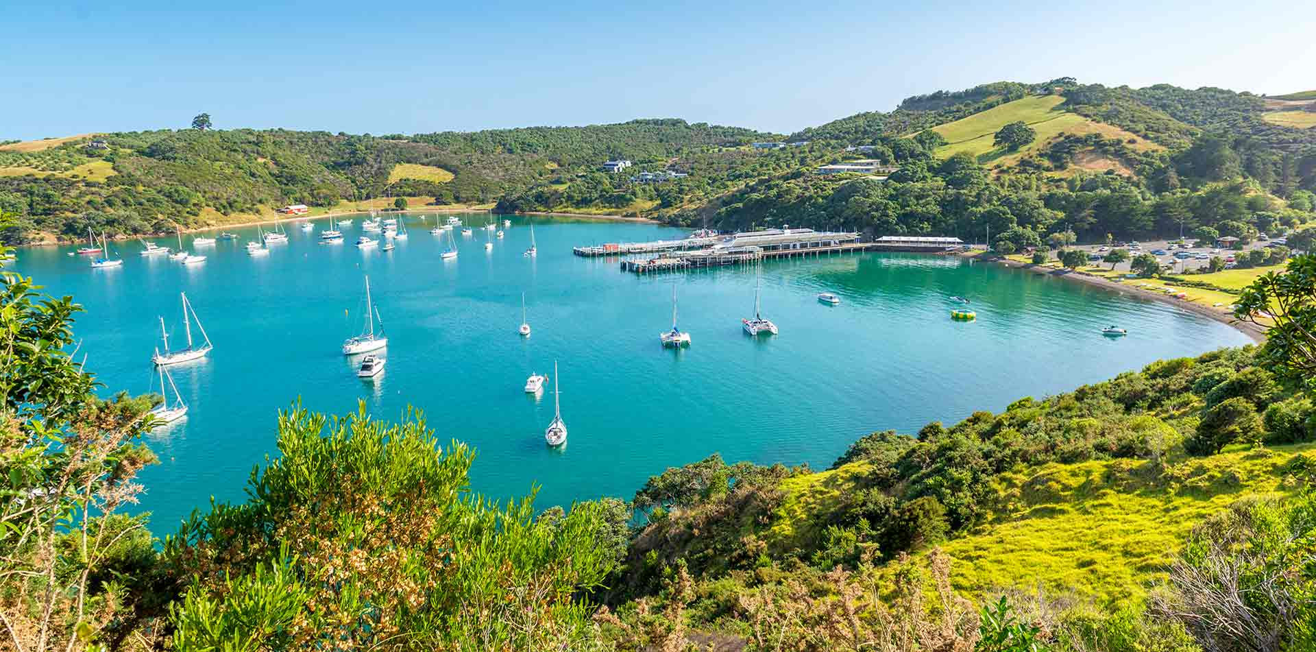 Waiheke Island bay in New Zealand