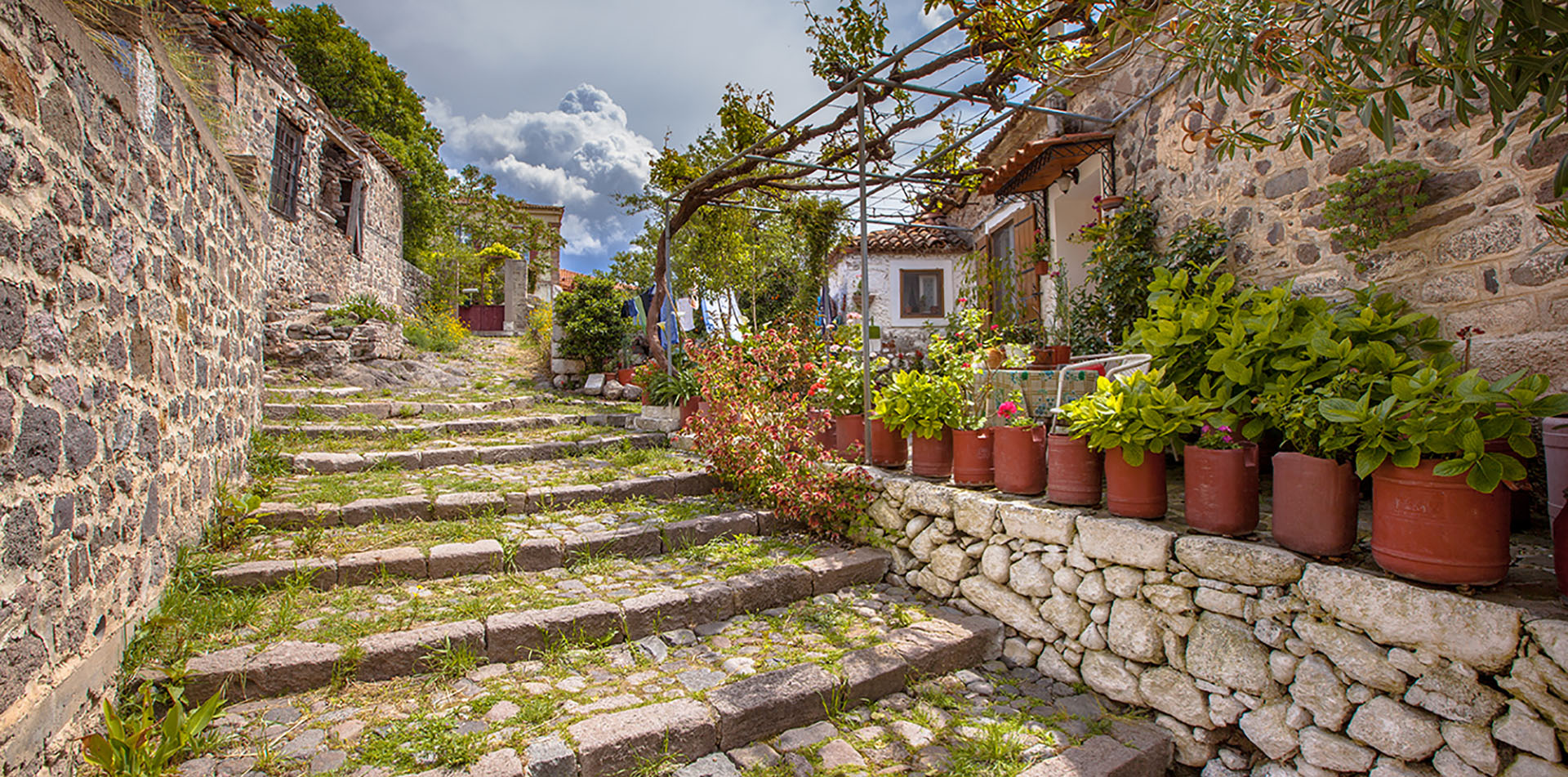 Stone Alleyway With Green Plants, Greece